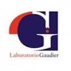 Laboratorio Clínico Gaudier Inc.